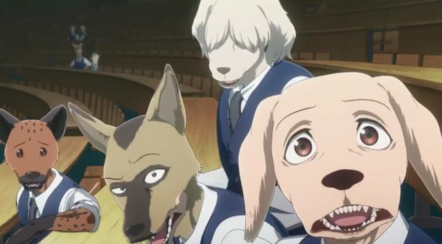 TV动画「动物狂想曲」第二季PV公开